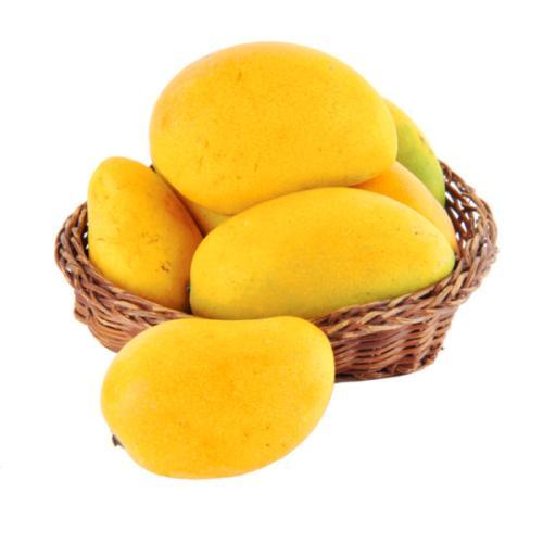 小台农芒果